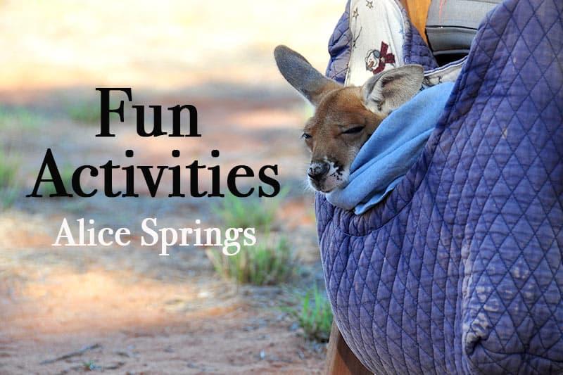 Fun activities Alice Springs